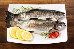 Hintergrundbilder Fische - Lebensmittel Zitrone Teller Trout Lebensmittel