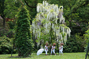 Wallpaper Germany Parks Wisteria Doll Little girls Trees Umbrella Grugapark Essen Nature