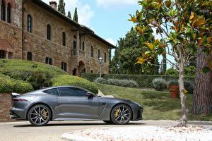 Bilder Jaguar Graue Seitlich 2017 F-Type SVR Coupe automobil