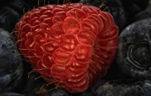Fotos Makrofotografie Himbeeren Hautnah Lebensmittel