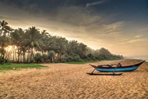 Hintergrundbilder Sri Lanka Tropen Küste Boot Sand Palmen Strand Induruwa Natur