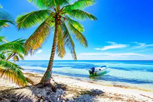Bilder Tropen Meer Boot Palmen Strände Bäume Natur