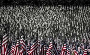 Sfondi desktop Stati uniti Molte Bandiera Americano