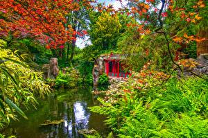 壁纸、、イギリス、ガーデン、池、パゴダ、低木、Biddulph Grange Garden、自然