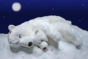 Pictures Bears Polar bears Cubs Toy Two Sleep Moon Snow animal