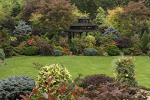 壁纸、、イングランド、ガーデン、パゴダ、芝、低木、Walsall Garden、自然