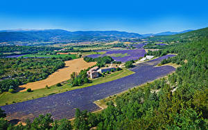 Hintergrundbilder Frankreich Landschaftsfotografie Acker Lavendel Haus Hügel Valensole Natur