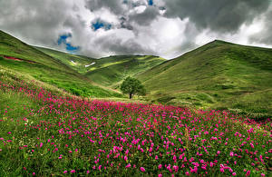 Pictures France Scenery Meadow Hill Clouds Grass Savoie Nature