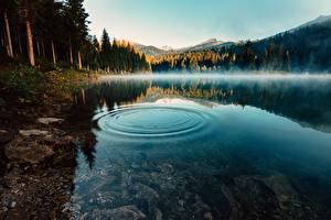 Fonds d'écran Lac Eau Matin Brouillard Cercles Nature