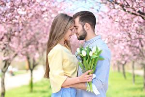 Pictures Man Love Tulips Lovers 2 Dark Blonde Girls