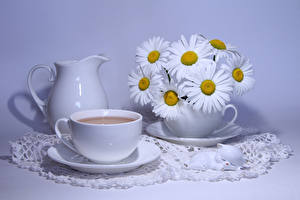 Wallpaper Still-life Bouquets Camomiles Drinks Colored background Pitcher Cup Food Flowers