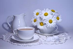 Hintergrundbilder Stillleben Sträuße Kamillen Getränke Farbigen hintergrund Kanne Tasse Lebensmittel Blumen