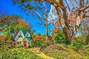 Hintergrundbilder USA Garten Gebäude Kalifornien Bäume Strauch HDRI South Coast Botanic Garden Natur