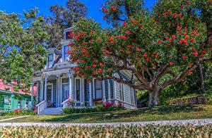 Desktop wallpapers USA Houses Retro California Design Trees HDR Heritage Square Museum Cities