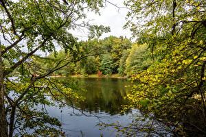 Bilder Ukraine Park Teich Ast Sumy Oblast Trostianets Natur