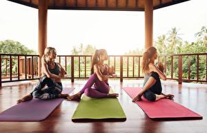 Fonds d'écran Yoga Trois 3 Entraînement Jambe S'asseyant Filles