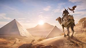Hintergrundbilder Kamele Krieger Ägypten Sonnenaufgänge und Sonnenuntergänge Assassin's Creed Origins Pyramide bauwerk Spiele 3D-Grafik