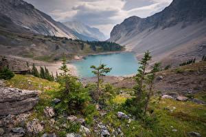 Fotos Kanada See Gebirge Steine Landschaftsfotografie Fichten Galatea lake Natur