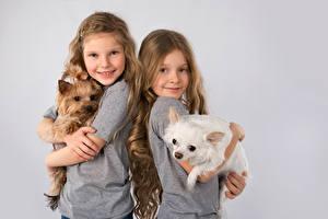 Wallpaper Dog Gray background Little girls Two Smile Yorkshire terrier Puppies Children