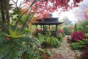 壁纸、、イングランド、ガーデン、パゴダ、Walsall Garden、自然