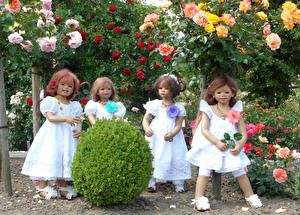 Pictures Parks Roses Doll Little girls Frock Shrubs Grugapark Essen Nature