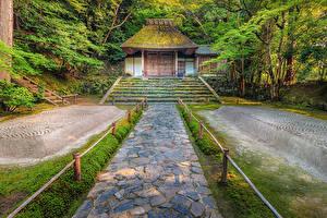 壁纸、、日本、京都市、公園、寺院、階段、自然