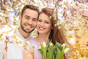 Picture Man Love Tulips Two Smile Brown haired Beautiful Girls