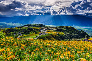 Hintergrundbilder Taiwan China Landschaftsfotografie Acker Himmel Hügel Wolke Fuli Hualien