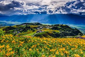 Sfondi desktop Taiwan Cina Paesaggio Campo agricolo Cielo Colline Nuvole Fuli Hualien Natura