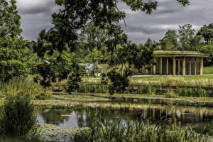 Fotos Vereinigtes Königreich Park Teich Ast Garden Harlow Carr Natur