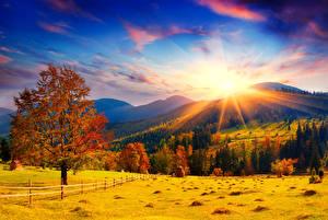 Hintergrundbilder Herbst Acker Himmel Landschaftsfotografie Bäume Hügel Sonne