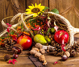 Pictures Autumn Sunflowers Apples Nuts Pears Berry Pine cone Food