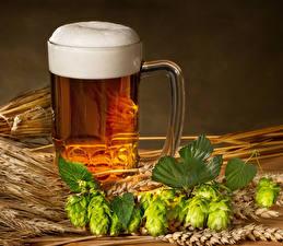 Pictures Beer Hops Mug Foam Spike Food