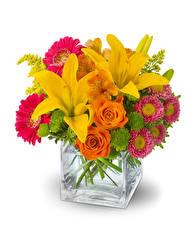 Fotos Sträuße Lilien Rose Gerbera Inkalilien Astern Weißer hintergrund Vase Blüte