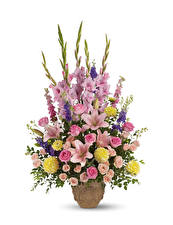 Fotos Sträuße Rose Lilien Gladiolen Georginen Weißer hintergrund Vase Blüte