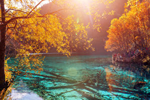 Sfondi desktop Cina Valle del Jiuzhaigou Parco Lago Autunno Rami Natura