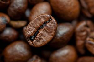 Fotos Kaffee Makrofotografie Großansicht Getreide Lebensmittel