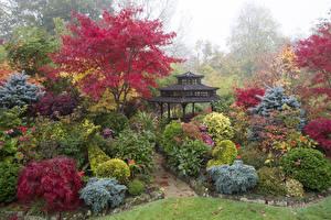 壁纸、、イングランド、ガーデン、パゴダ、低木、Walsall Garden、自然