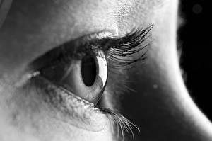 Bilder Augen Nahaufnahme Makro Wimper Schwarzweiss