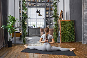 Bilder Fitness Braunhaarige Trainieren Rücken Bein Spagat junge Frauen Sport
