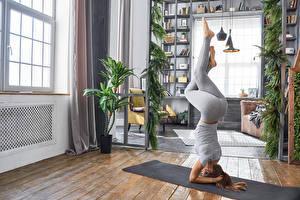 Bilder Fitness Braune Haare Körperliche Aktivität Bein Yoga Mädchens Sport