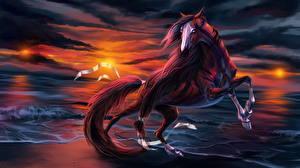 Bilder Pferde Küste Gezeichnet Fantasy