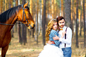 Photo Horses Love Couples in love 2 Wedding Brides Blonde girl Grooms On a date Girls