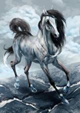 Fotos Pferd Gezeichnet Tiere