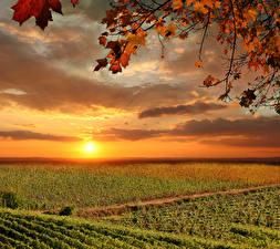 Fotos Italien Toskana Sonnenaufgänge und Sonnenuntergänge Felder Himmel Herbst Wolke Sonne Natur