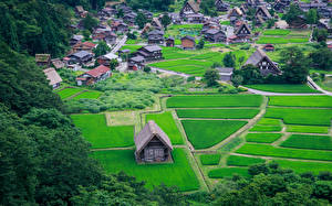 壁纸、、日本、住宅、畑、Nagoya、