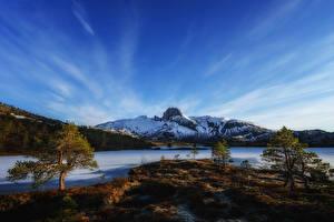 Fotos Norwegen See Himmel Berg Bäume Schnee Bodo Natur
