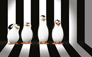 Images Penguins Madagascar Stripes Penguins of Madagascar 3D_Graphics
