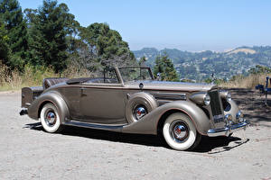 Tapety na pulpit Retro Kabriolet Szary 1937 Packard Twelve Coupe Roadster samochód