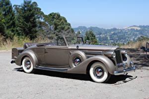 Papel de Parede Desktop Retrô Cabriolé Cinza 1937 Packard Twelve Coupe Roadster carro